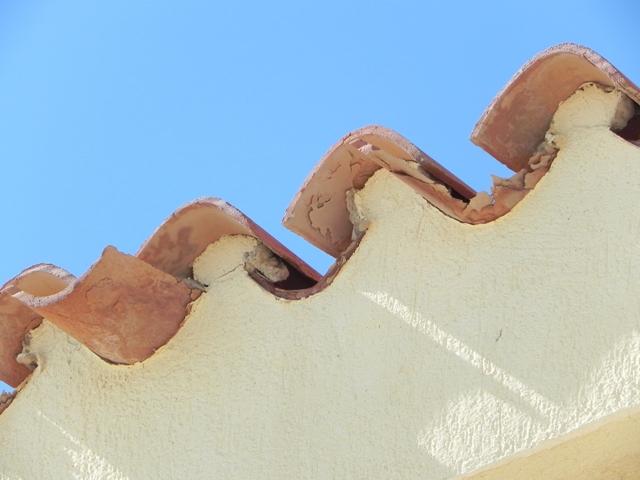 Arquitecto Técnico Paterna. Erosión tejas