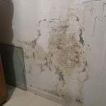 Humedad en pared por ascensión capilar