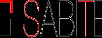 2013-08-30-logo-SABITEC-300x75