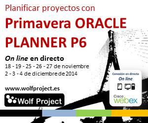 Curso planificación de proyectos con Primavera P6